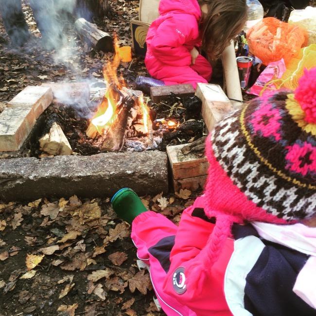 Woodland Beasties campfire