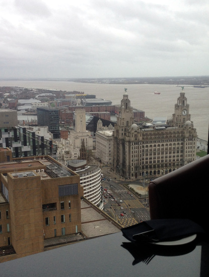 panoramic 34 liver building view